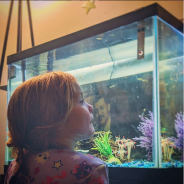 Gazing into the fish tank